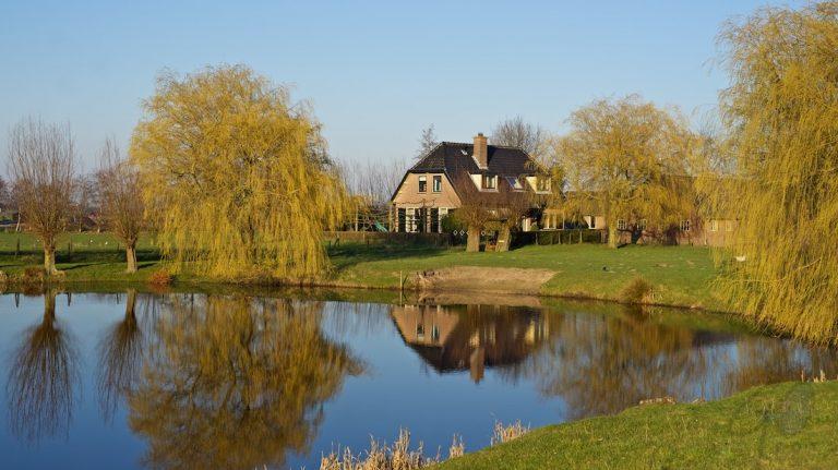 Dagfoto 080-2011 Hoogland-West