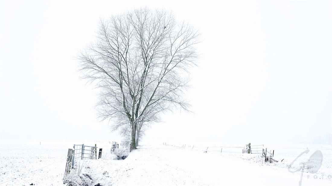 2017 geen sneeuw in Hoogland-West