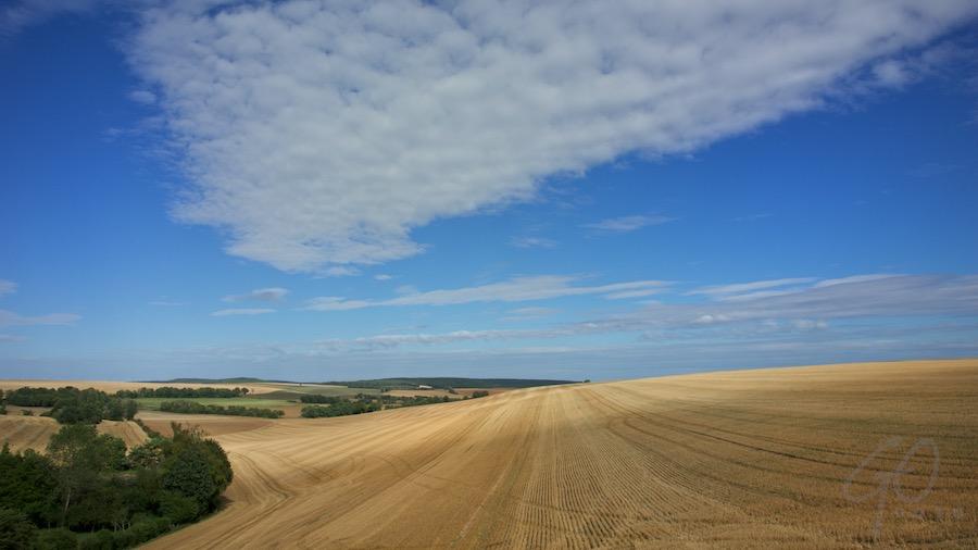 Vakantieverhaal in Frankrijk - Goudgele graanvelden in de Cote-d'Or
