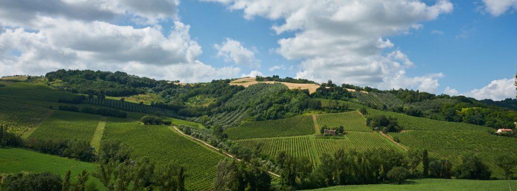 Le Marche Italië - ©Gerard Oonk DSC05669