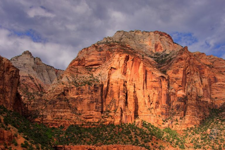 Dagfoto 141-2011 Amerikareis
