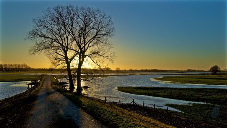 Dagfoto 010-2011 Hoog water