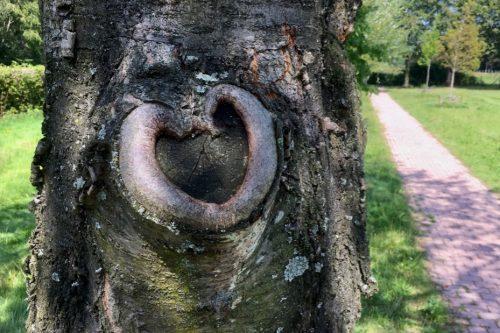 Tekst bij Blog Verzengende liefde tussen beeld en taal